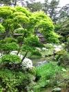 Honmamuseum2